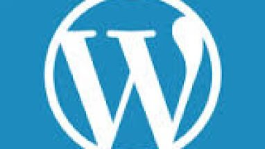 WordPress 4.6 güncellemesi Warning: ini_get_all() has been disabled for security reasons in